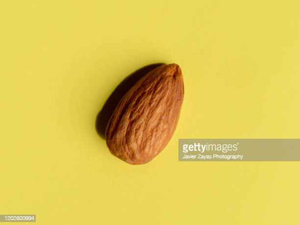 almond on yellow background - アーモンド ストックフォトと画像
