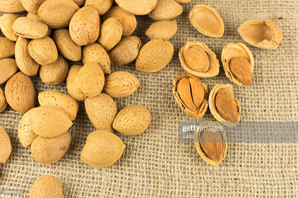Almond : Stock Photo