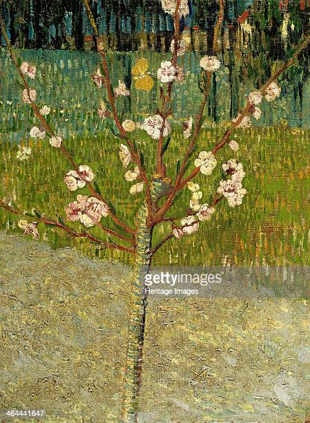 Almond tree in blossom 1888 Found in the collection of the Van Gogh Museum Amsterdam