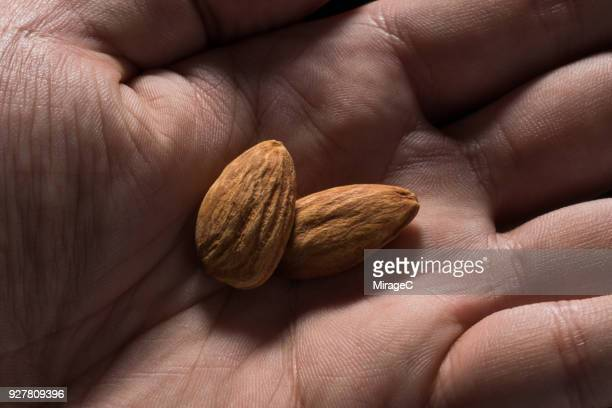 almonds in palm - almond stock pictures, royalty-free photos & images