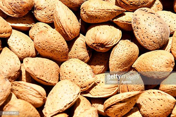 almonds in their shells - nutshell stock photos and pictures