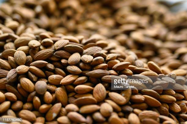 almonds - mauro tandoi stock pictures, royalty-free photos & images
