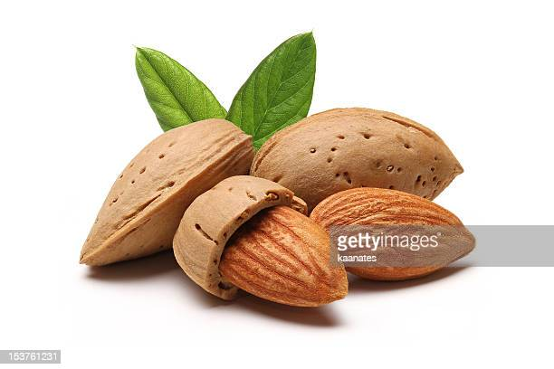 almonds - nutshell stock photos and pictures