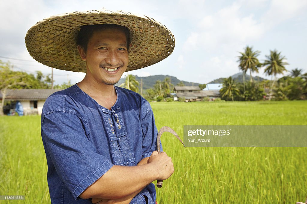 Almost harvest time : Stock Photo