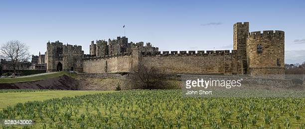 alnwick castle; alnwick, northumberland, england - alnwick castle stock photos and pictures