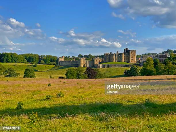 alnwick castle, england - alnwick stock pictures, royalty-free photos & images