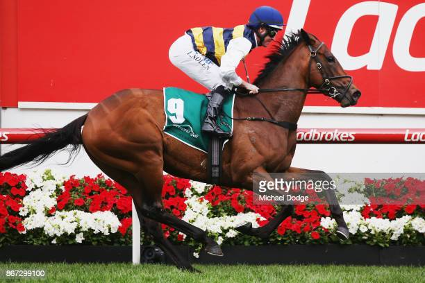 Aloisia ridden by Luke Nolen wins race 10 the Drummond Golf Vase during Cox Plate Day at Moonee Valley Racecourse on October 28 2017 in Melbourne...