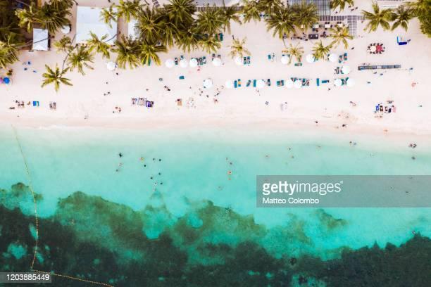 alona beach overhead view, bohol, philippines - 藻 ストックフォトと画像