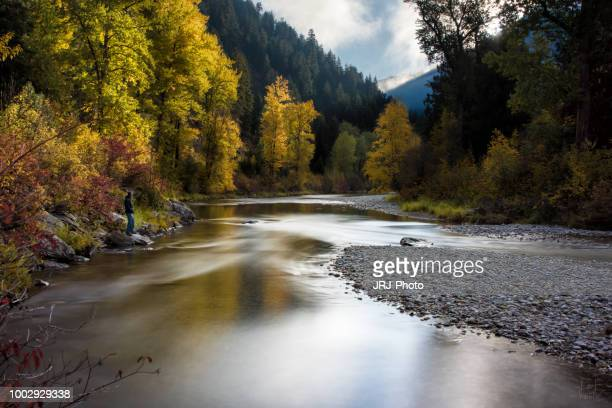 alone in nature 3 - spokane stock pictures, royalty-free photos & images