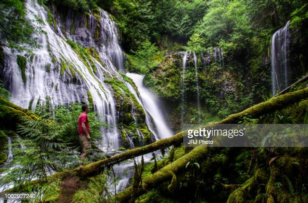 alone in nature 7 - spokane stock pictures, royalty-free photos & images