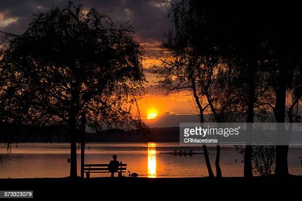 alone in the sunset - crmacedonio imagens e fotografias de stock