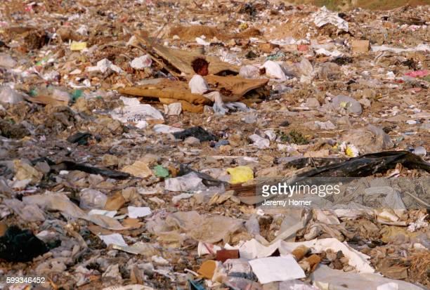 Alone on a Rubbish Dump