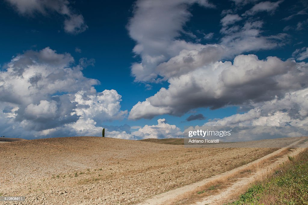 Alone on the hill : Foto stock