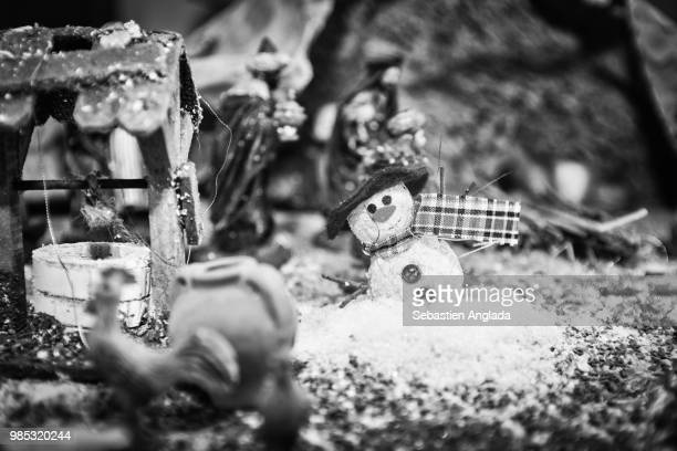 alone - christmas beetle stock pictures, royalty-free photos & images