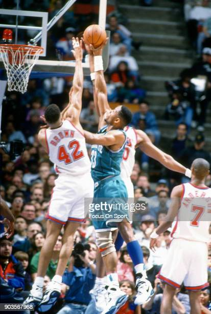 Alonzo Mourning of the Charlotte Hornets shoots over PJ Brown of the New Jersey Nets during an NBA basketball game circa 1993 at the Brendan Byrne...