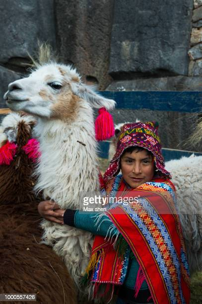 Alpaca and local andean people dressed in traditional clothing