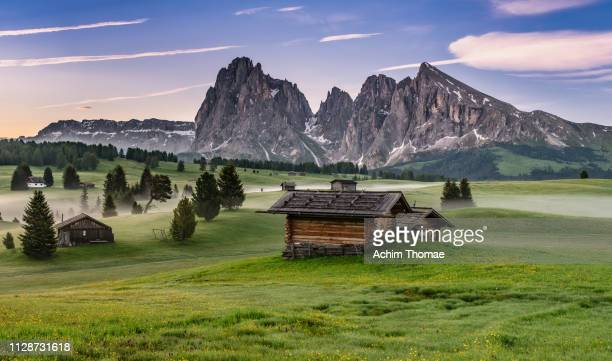 alpe di siusi (seiser alm), dolomite alps, italy, europe - dolomiten stock-fotos und bilder