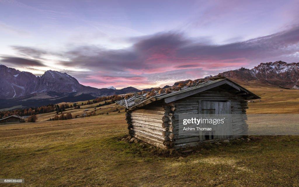 Alpe di Siusi (Seiser Alm), Dolomite Alps, Italy, Europe : Stock Photo