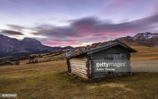 Alpe di Siusi (Seiser Alm), Dolomite Alps, Italy, Europe