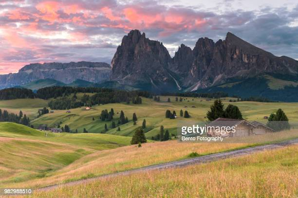 alpe di siusi, dolomite, italy - remote location stock pictures, royalty-free photos & images