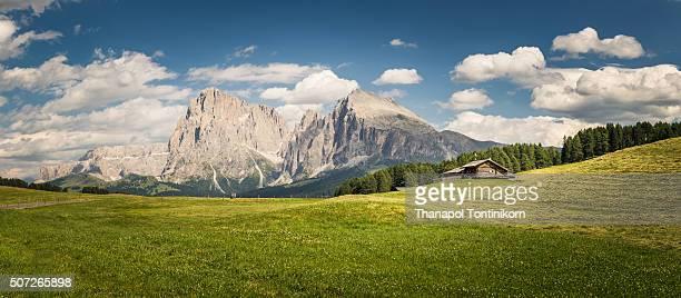 Alpe Di Siusi (Seiser Alm) , Dolomites , Italy