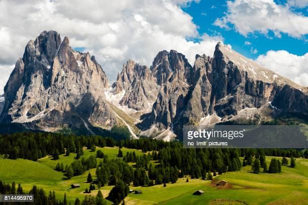 alpe di siusi in trentino alto adige - montagna foto e immagini stock