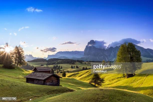 alpe di siusi, south tyrol, italy - alto adige italy stock pictures, royalty-free photos & images