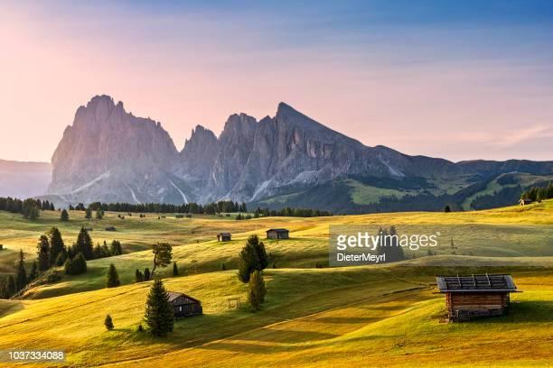 alpe di siusi sunrise with sassolungo or langkofel mountain group in background - valle foto e immagini stock