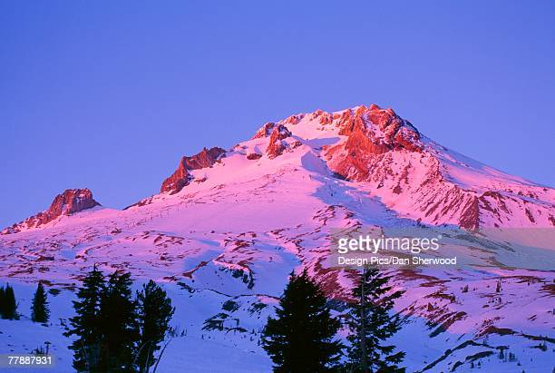 """alpenglow on mount hood, mount hood national forest"" - dan peak stock photos and pictures"