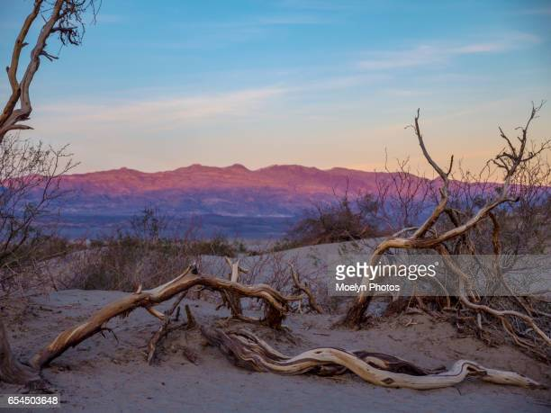 Alpenglow-Mesquite Flat Sand Dunes at Sunset