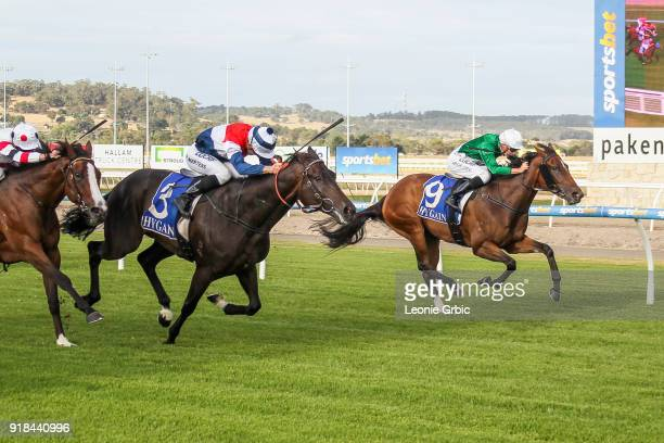 Alpha ridden by Beau Mertens wins the RC Asphalt Maiden Plate at Racingcom Park Racecourse on February 15 2018 in Pakenham Australia