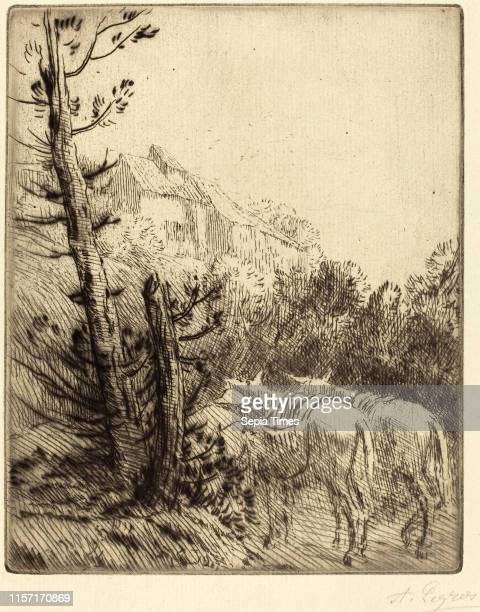 Alphonse Legros, Farm on the Hillside , French, 1837 - 1911, etching and drypoint.