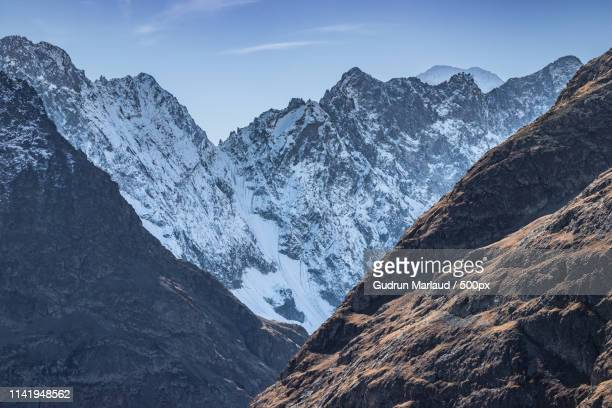 alpine beauty - nautre stock pictures, royalty-free photos & images