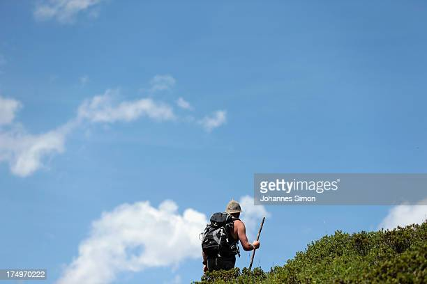 Alpine cattle herder Martin Riedmann walks on his daily circuit scanning the meadows for lost and injured cattle around alpine dairy Alpe Albona in...