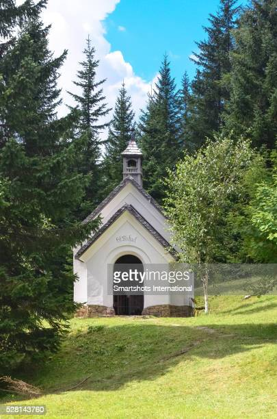 Alpine chapel in South Tyrol at summertime surrounded by coniferous trees