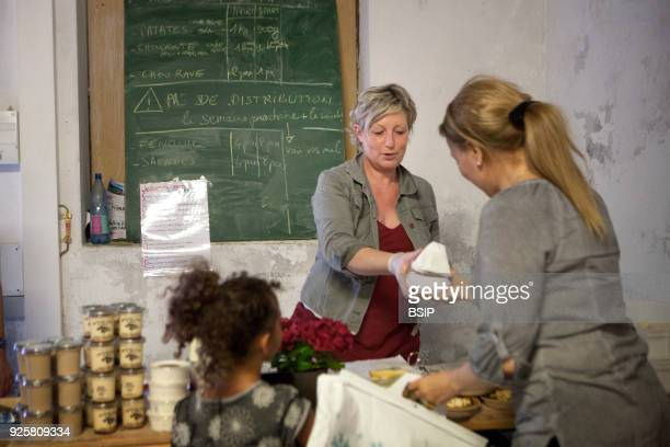 Alpine Dairy goat Farm France Converts the goat milk into various dairy products cheeses yoghurts flans and handles supply to her clients Feed goats...