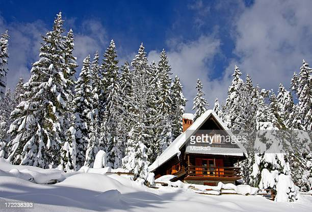 alpine hut - chalet stock pictures, royalty-free photos & images