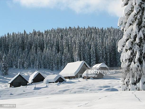 alpine cabañas cubiertas de nieve - casa estilo rancho fotografías e imágenes de stock