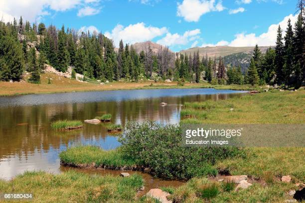 Alpine lake and meadow in the Shoshone National Forest of northern Wyoming along the scenic Bear tooth Highway The Bear tooth Mountains are located...