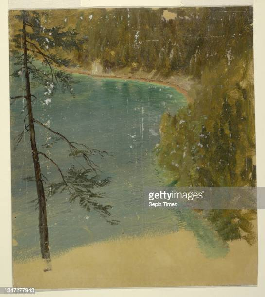 Alpine Lake , Frederic Edwin Church, American, 1826–1900, Brush and oil on cardboard, Vertical drawing of the border of an Alpine lake, possibly the...