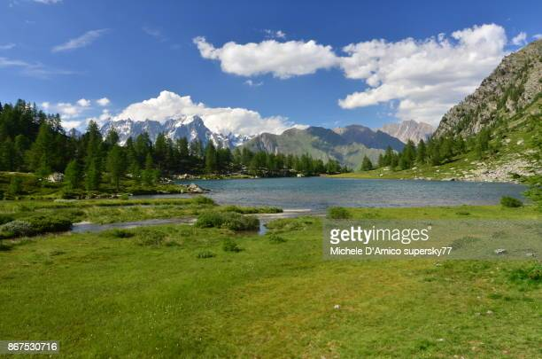 alpine lake in the green - grass area stock pictures, royalty-free photos & images