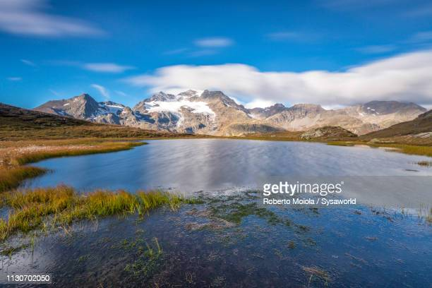 alpine lake, val dal bugliet, switzerland - lakeshore stock pictures, royalty-free photos & images