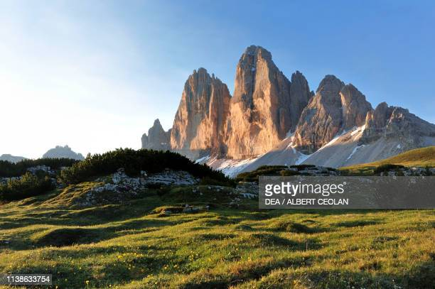 Alpine meadow in front of the Tre Cime di Lavaredo, seen at sunset, Upper Puster valley, Dolomites, Trentino-Alto Adige, Italy.