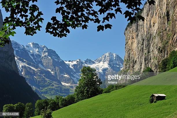 Alpine meadow with barn / raccard in the Lauterbrunnen Valley Bernese Oberland Swiss Alps Switzerland
