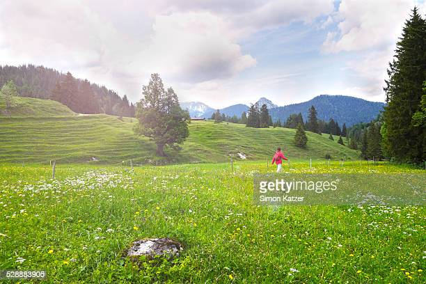 Alpine meadow with mountain view