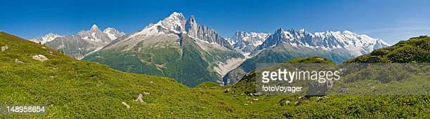 alpine meadows snow capped summits - mont blanc massif stock photos and pictures