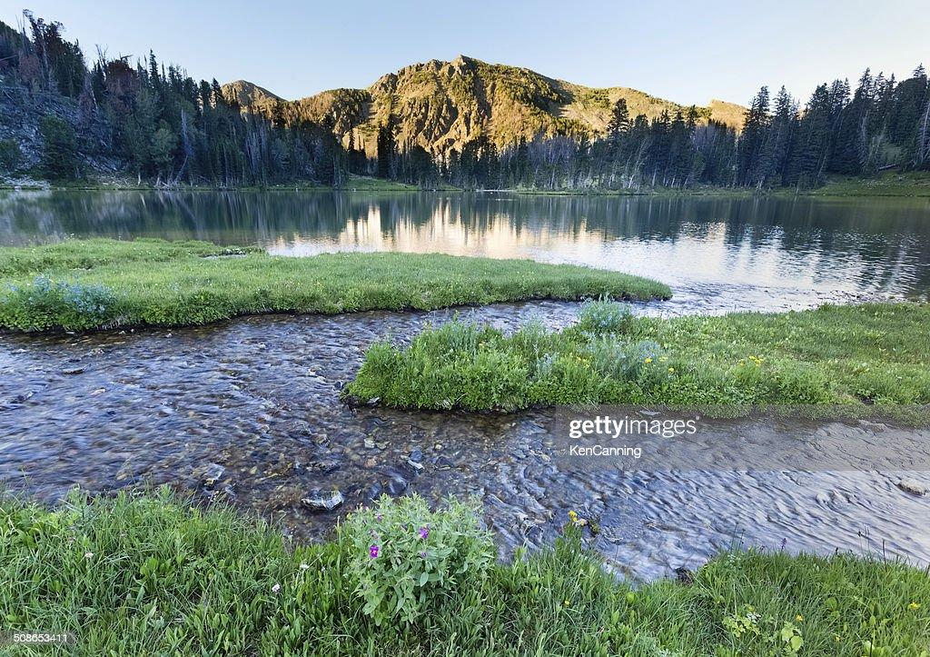 Alpine Mountain and Lake : Stock Photo