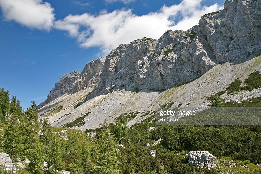 Alpine a las montañas : Foto de stock