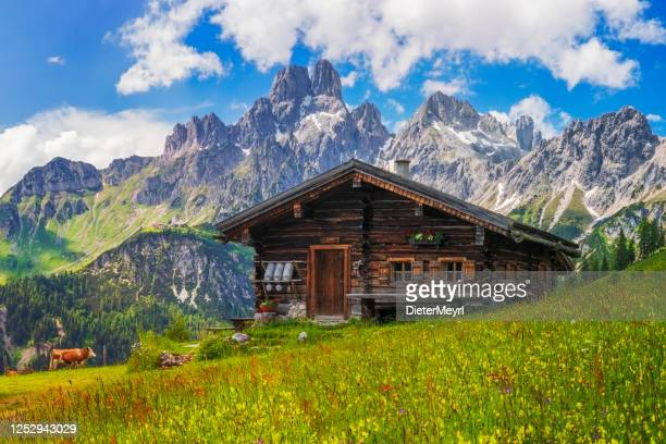 alpine scenery with mountain chalet in summer - bavarian alps stock pictures, royalty-free photos & images
