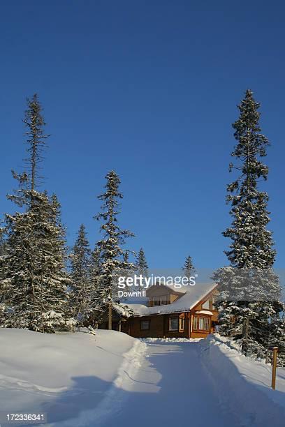 Ski Alpin-Chalet